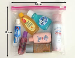 Image: The liquids, gels, and aerosols in quart-size and zip-top bag.